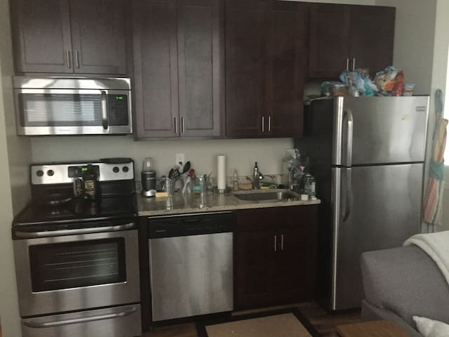 modern 1 bedroom apartment in downtown high rise apartments for rent