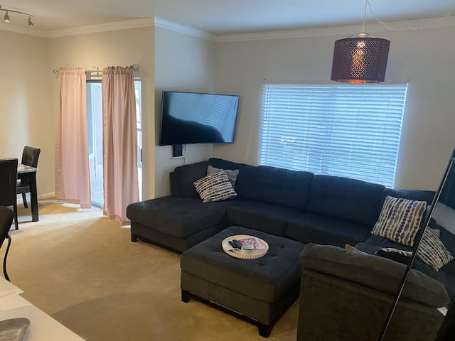 """Large comfy couch for lounging with 55"""" TV"""