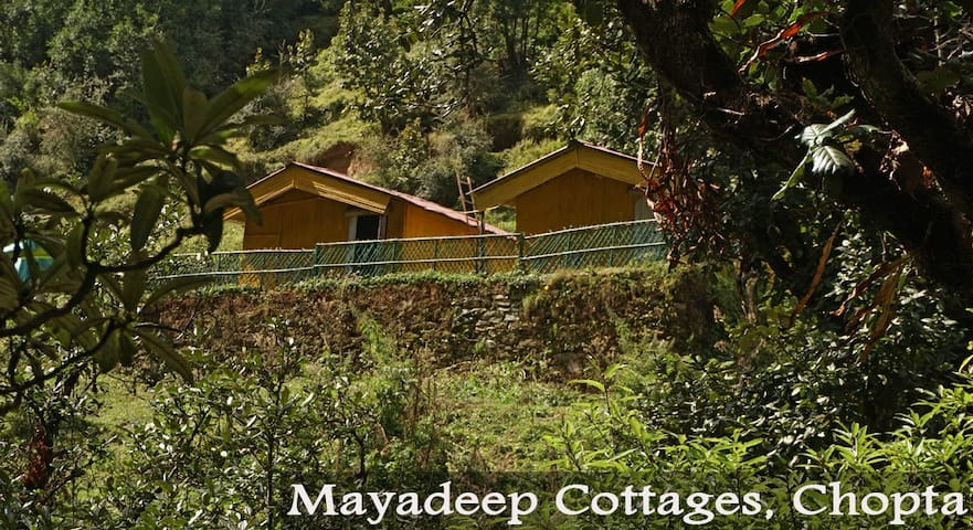 Cottage in the Chopta Himalayas
