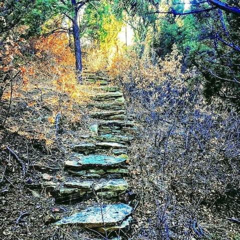 Stone pathway on our hiking trails.
