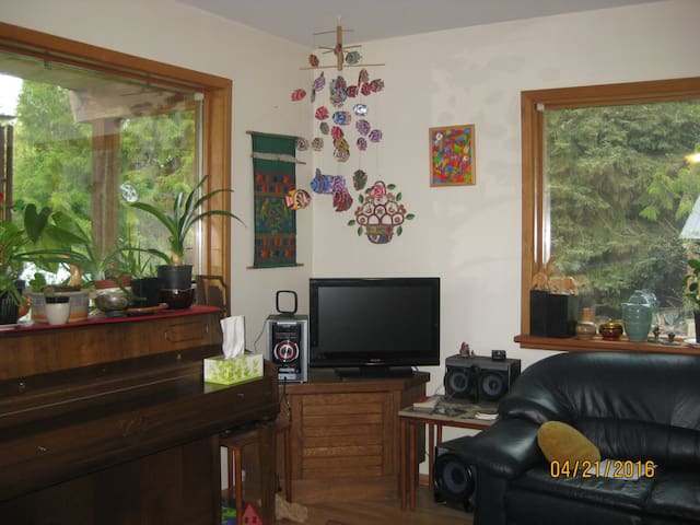 Yellow Dog BnB, mountain view, two single beds