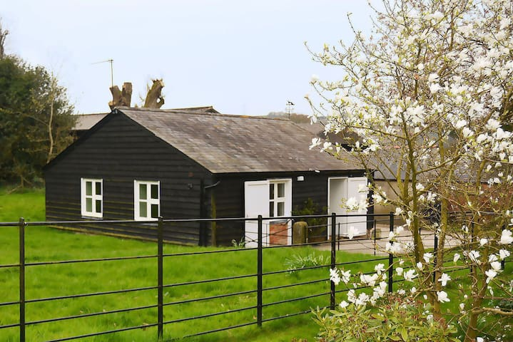 Unique timber clad single-storey dwelling in a lovely rural Wiltshire hamlet. Pet friendly