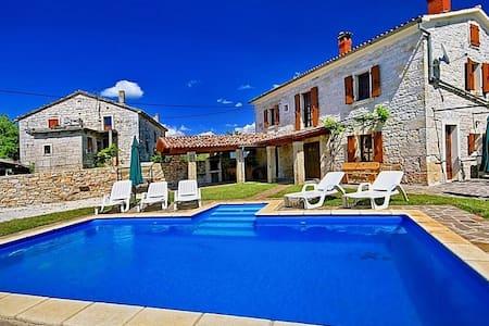 Villa David with swimming pool - Srbinjak