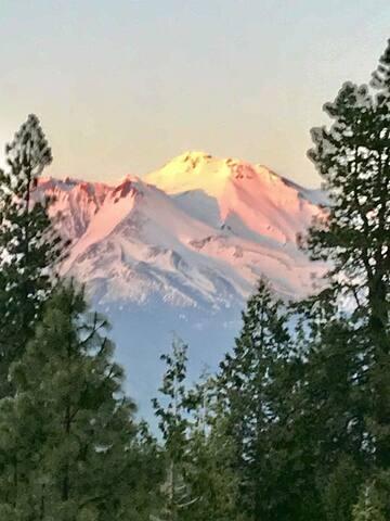 Mt. Shasta Studio