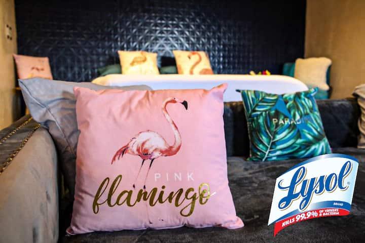 Casa Flamingos Estudio 1