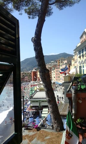 Room with seaview in the historical center - Camogli - Apartamento