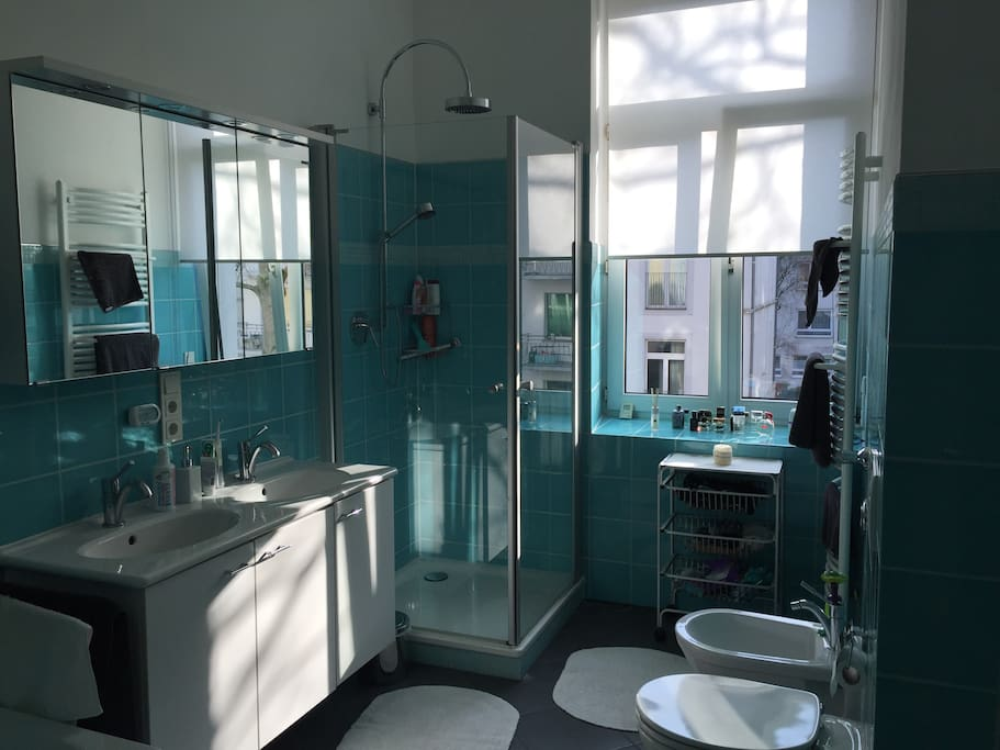 Daylight bathroom to share with host