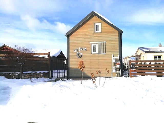 tiny house OLÍVIA-low Tatra,Slovakia