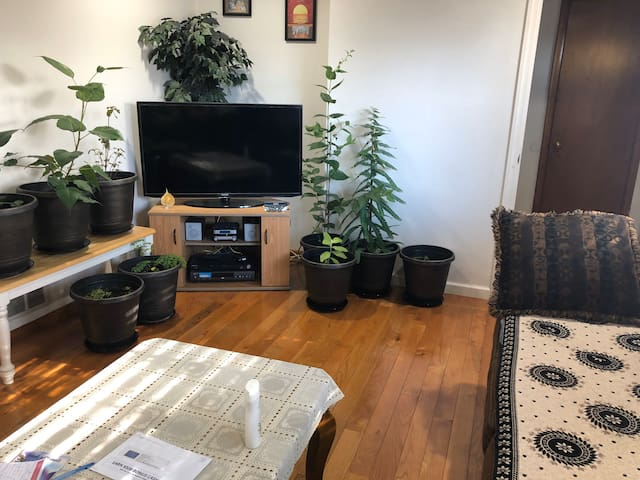 Single family house for monthly rent