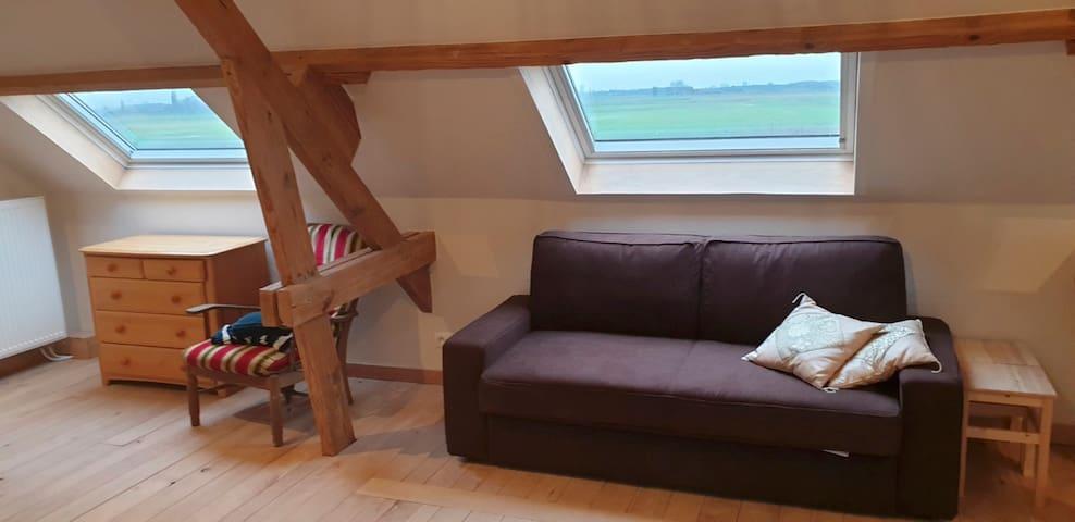 Deze studio heeft een aparte kamer met dubbel bed en een slaapbank van zeer goede kwaliteit zoals je op deze foto kan zien.