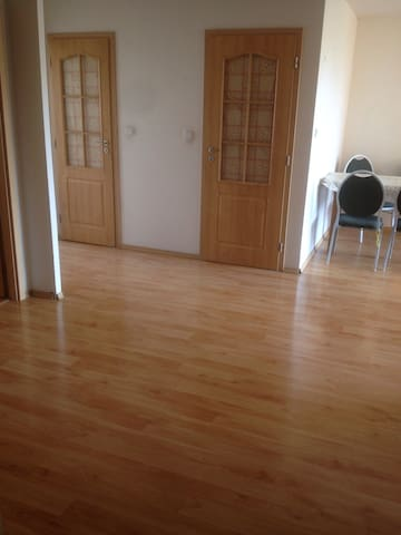 Bright and spacious apartment 4+1 98m2 - 布拉格 - Lejlighed