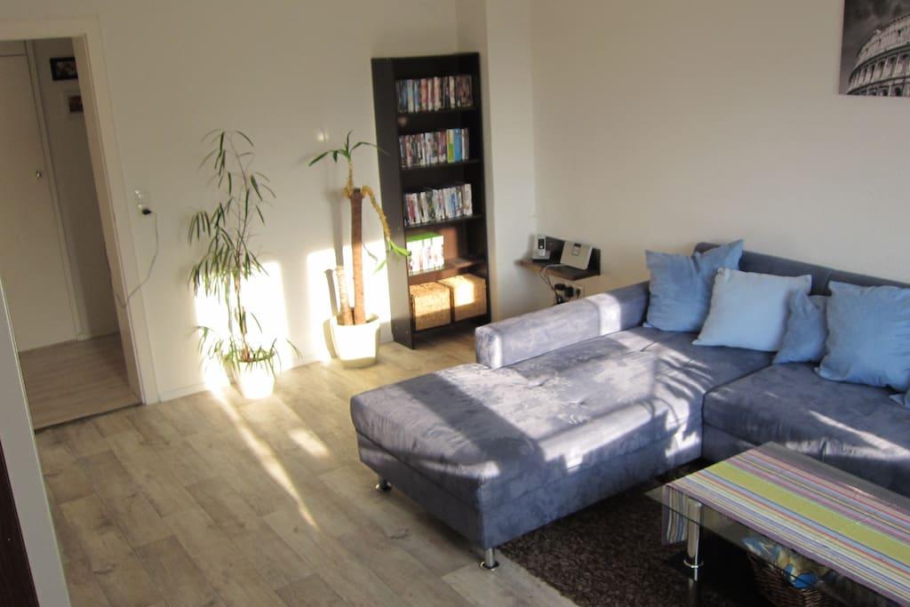 Wohnzimmer mit DVD-Sammlung