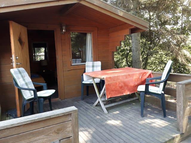 Hütte auf Islandpferdehof bei Blavand