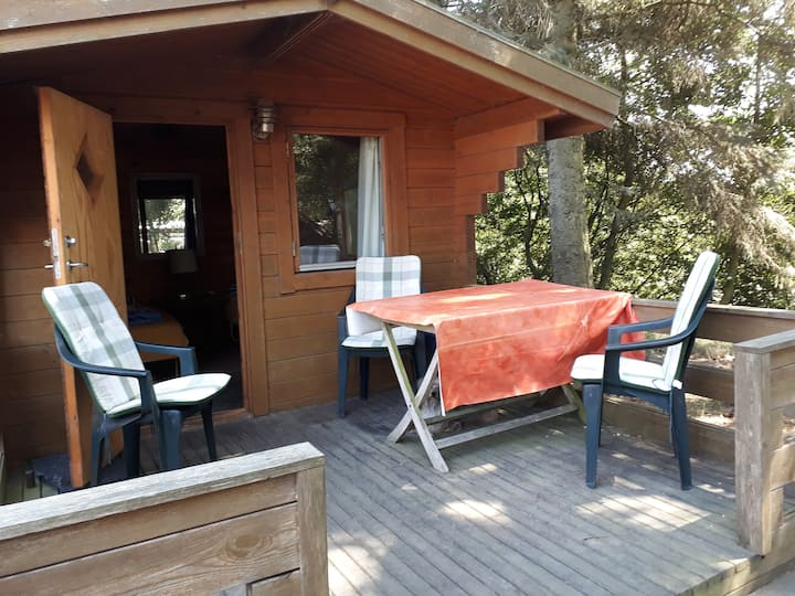Hütte 1 auf Islandpferdehof bei Blavand