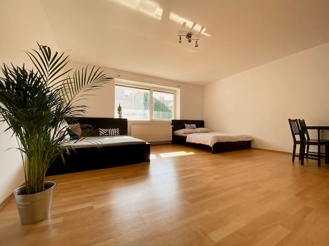 Sunny apartment close to the centre with parking