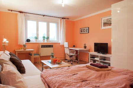 Bright & clen flat few minutes from the downtown - Prag - Wohnung