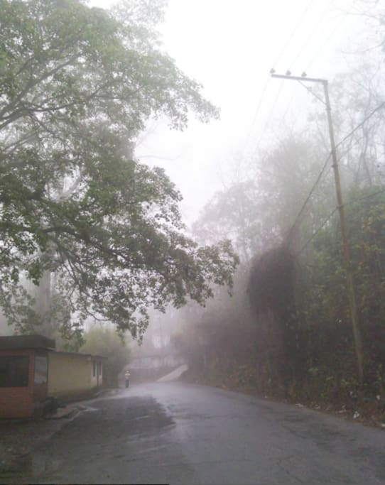 It looks like Silent Hill, but is the street of my house when it has fog early in the morning.