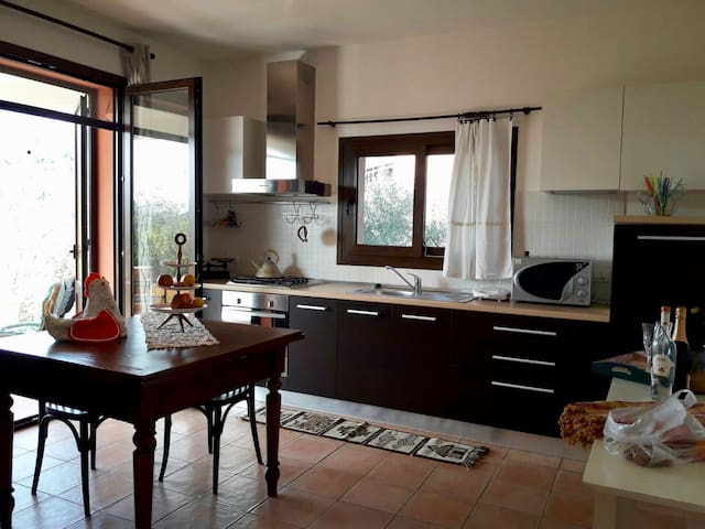 Twinflats in the olive grove for family or friends - Montefiore Conca - Apartmen