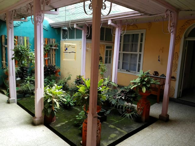 Charming antique house with parking - San Francisco de Goicoechea