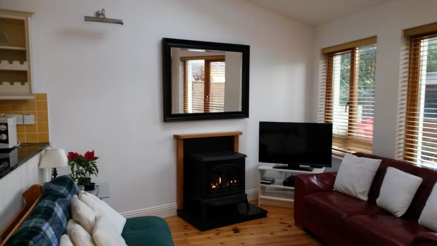 Beautiful 2 Bed. City Centre Apt. - Galway - Apartment