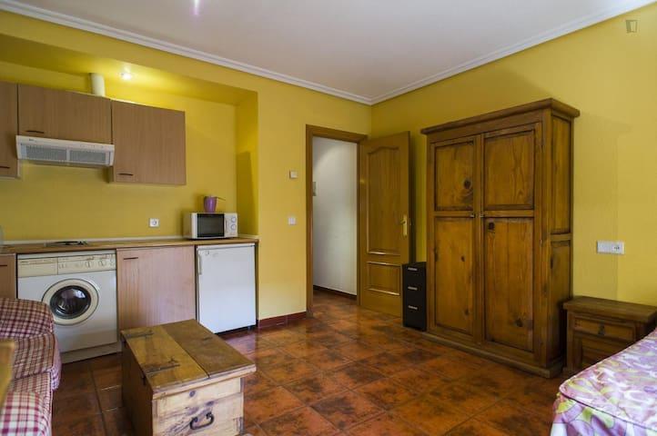 Estudio 2ºC muy centrico - Salamanca - Apartment