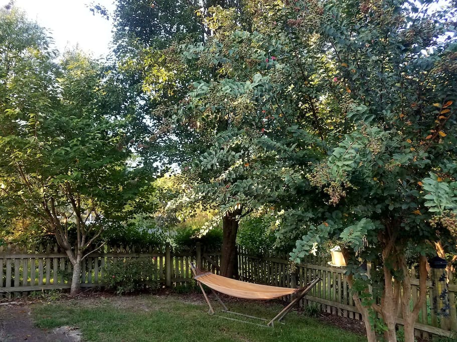 Lovely hammock in serene backyard