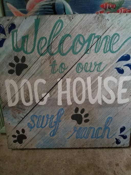 Welcome to The Dog House Surf Shop