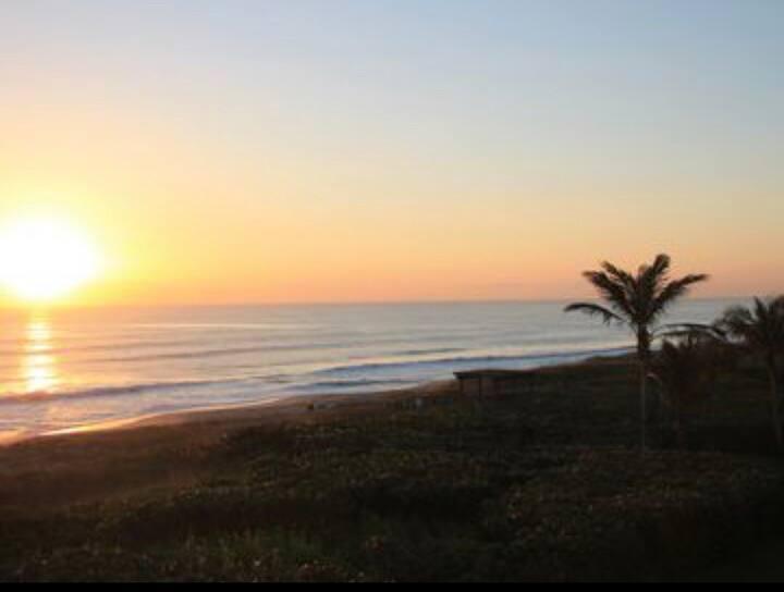 Best of Beach Paradise ~