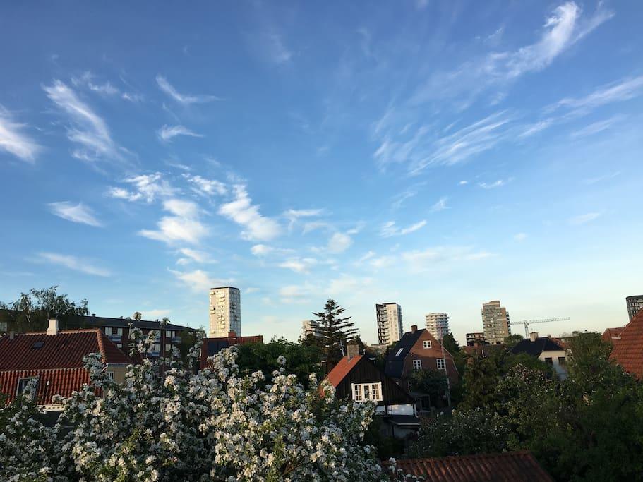 Feel at home close to city sea h user zur miete in for Kopenhagen unterkunft