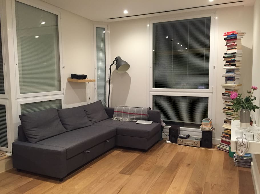 Living room & kitchen (sofabed - for 2)