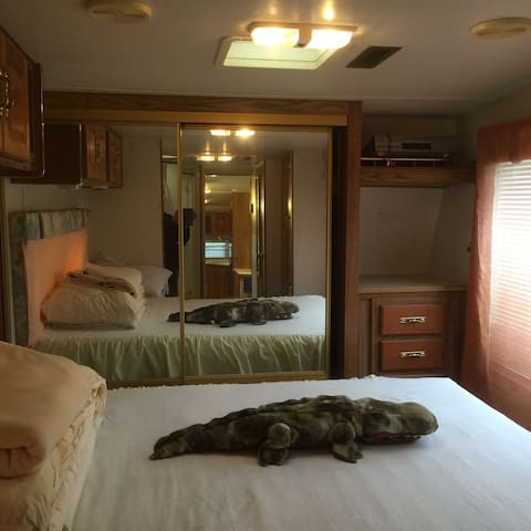 Cozy RV guesthouse Silicon Valley