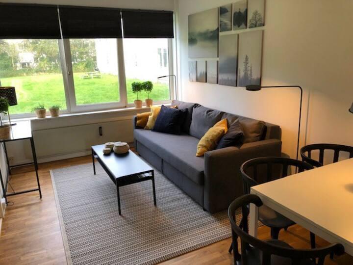 T45a.1Small cozy apartment in suburb to Copenhagen