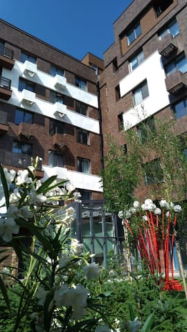 Bezalel Downtown