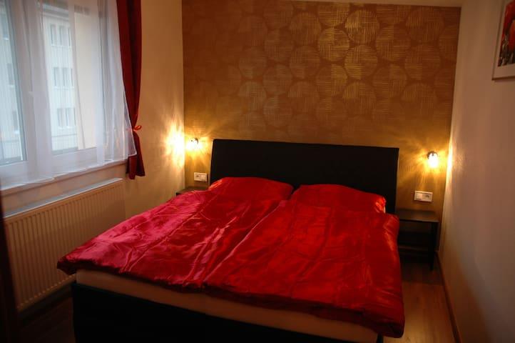 Vila Brezno - Brezno - Hus