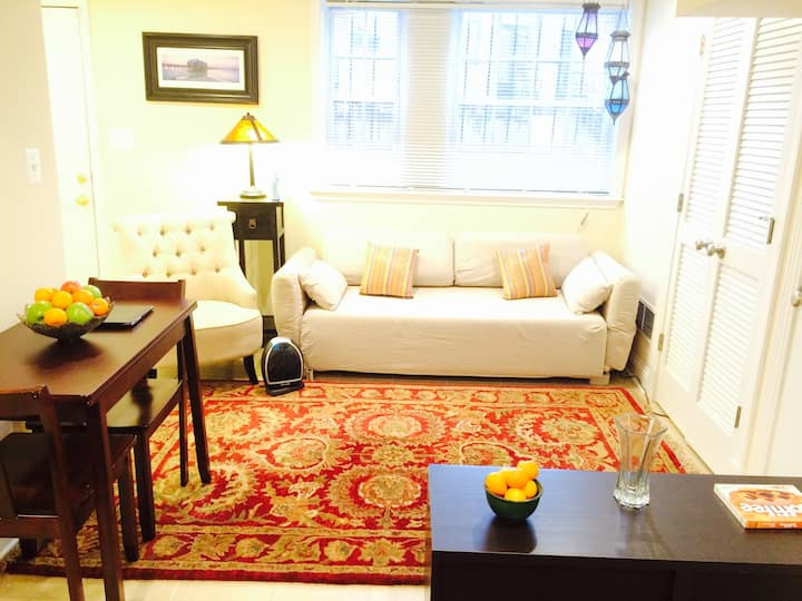 Sunny 1st floor Apt - Pet friendly, free parking