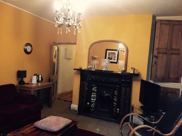 Victorian 1 Bedroom Flat - Cardiff  - Apartmen