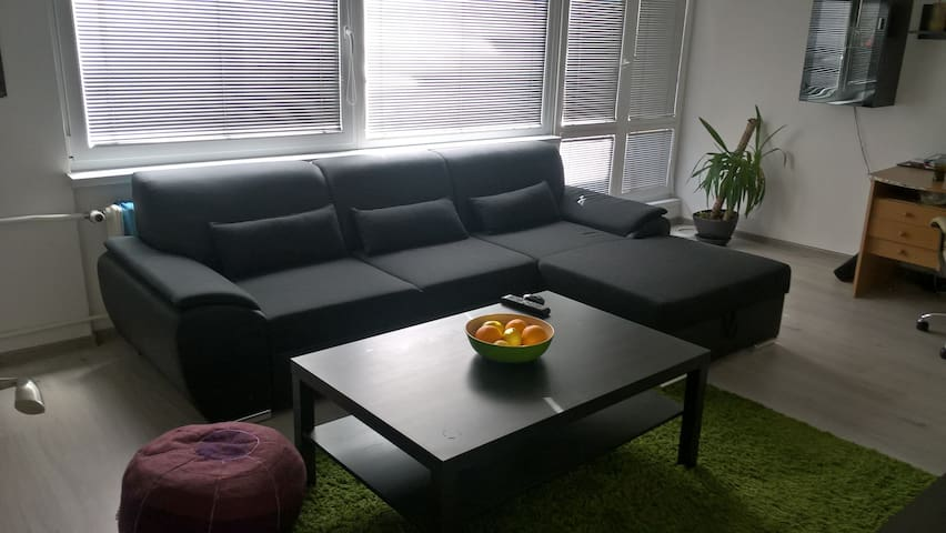 Comfortable sofa in minimalistic flat,peacful area - Frýdek-Místek - Apartment