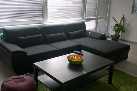Comfortable sofa in minimalistic flat,peacful area - Frýdek-Místek - Appartement