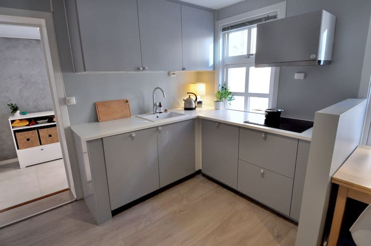 Eco-friendly city center, modern 1 bedroom
