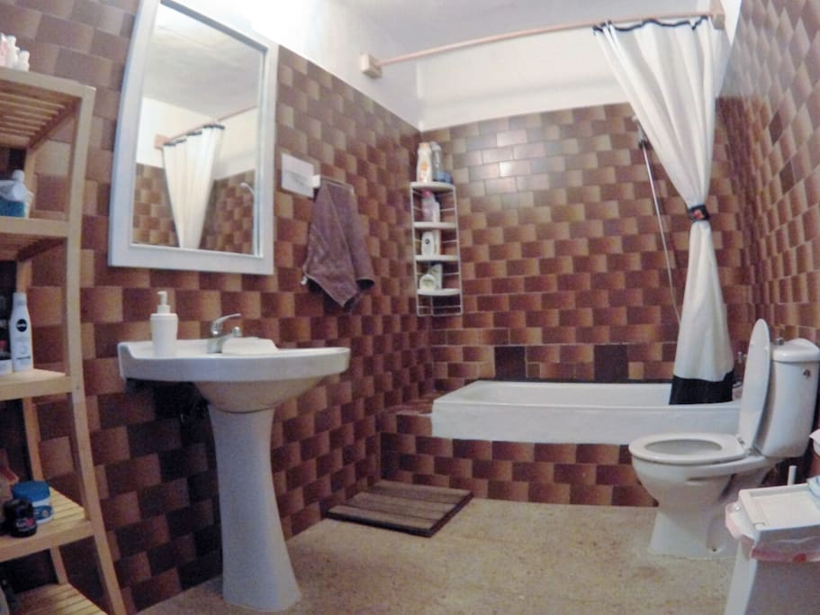 CLEAN AND TIDY TOILET WITH SHOWER AND WC.