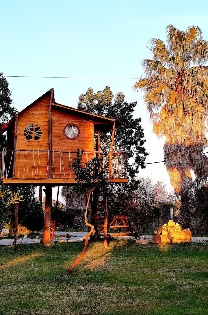 Ionian Treehouse Ecohosting - Dream catcher