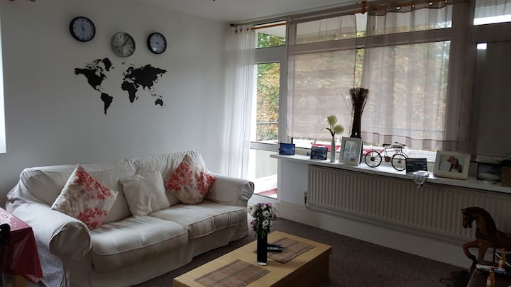 Lovely double bedroom in Roehampton
