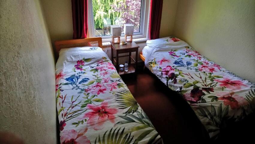 Twin + double sofa bed + lounge. Near Soton Univ.