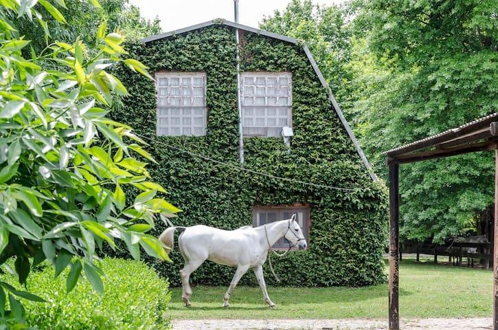 casita en caballerizas de caballos de polo