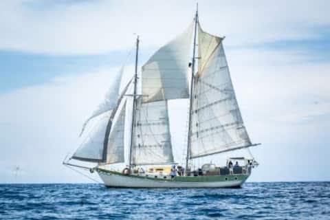 Beautiful Traditional Sailing Vessel
