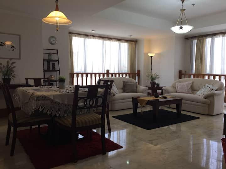 Large 2 Bedroom Apartment  - Kemang, Jakarta