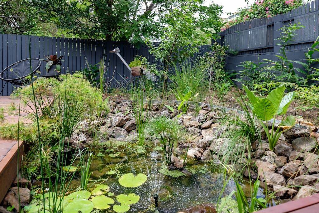 ponds, garden