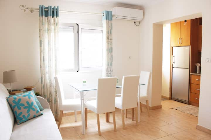 Central apartment, fully equipped