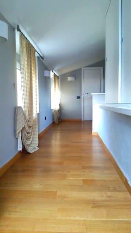 Cozy one bedroom apartment with vie