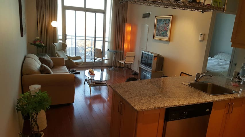 penthouse one bedroon apartment.